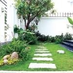 Cách trồng cây xanh đúng phong thủy